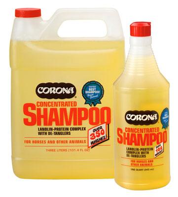 Corona Shampoo Concentrate