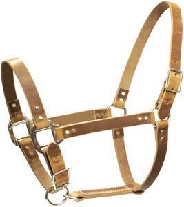 Abetta 1'' Harness Leather Halter