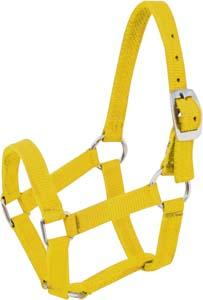 Abetta Mini Yearling Halter