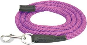 Abetta Nylon Lead with Leather Ends and Snap