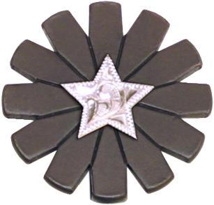 Abetta Texas Engraved Star Key Chain