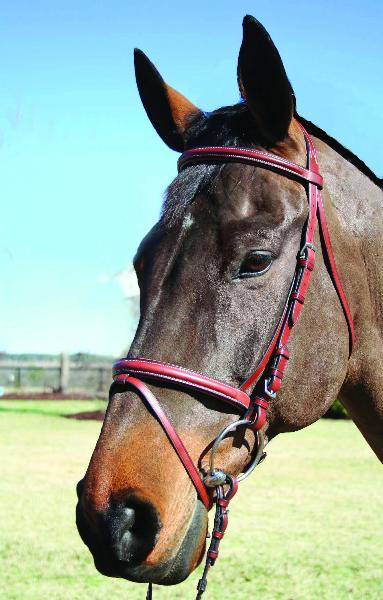 Nunn Finer Lamplight Bridle