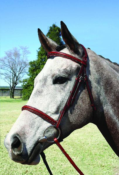 Nunn Finer Millbrook Bridle