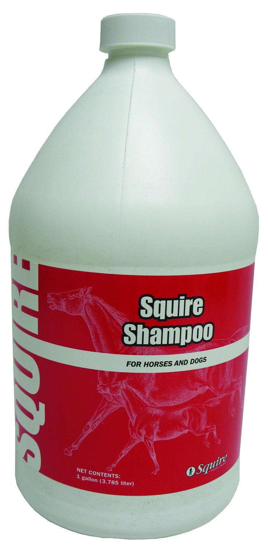 Squire Shampoo