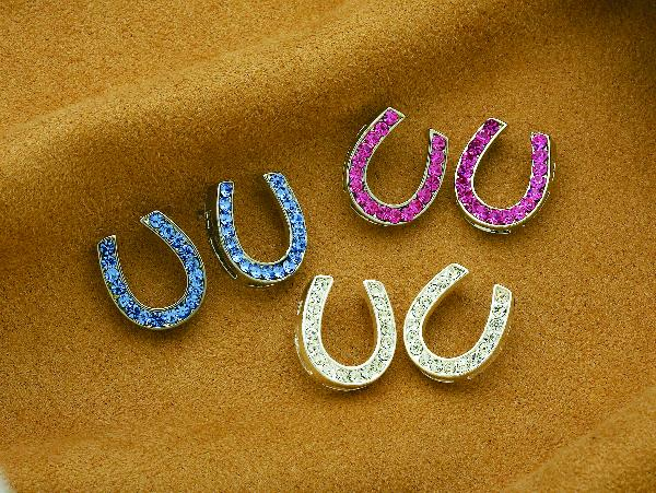 Rhinestone Horseshoe Post Earrings
