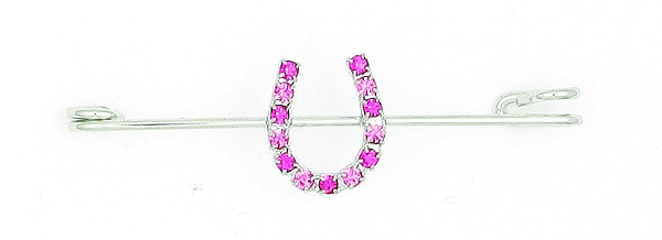 Finishing Touch 2-Tone Rhinestone Horseshoe Stock Pin - Pink