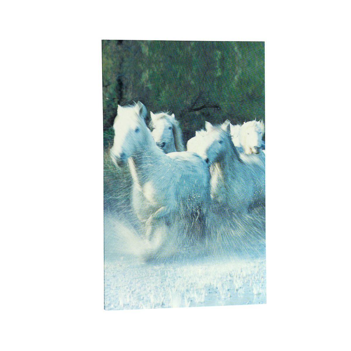 HorZe Notebook - White Horse