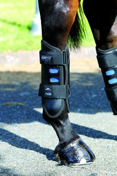 Horseware Dalmar Eventer Back Boot