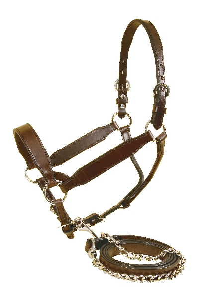 TORY LEATHER Congress Style Show Halter - Matching Lead