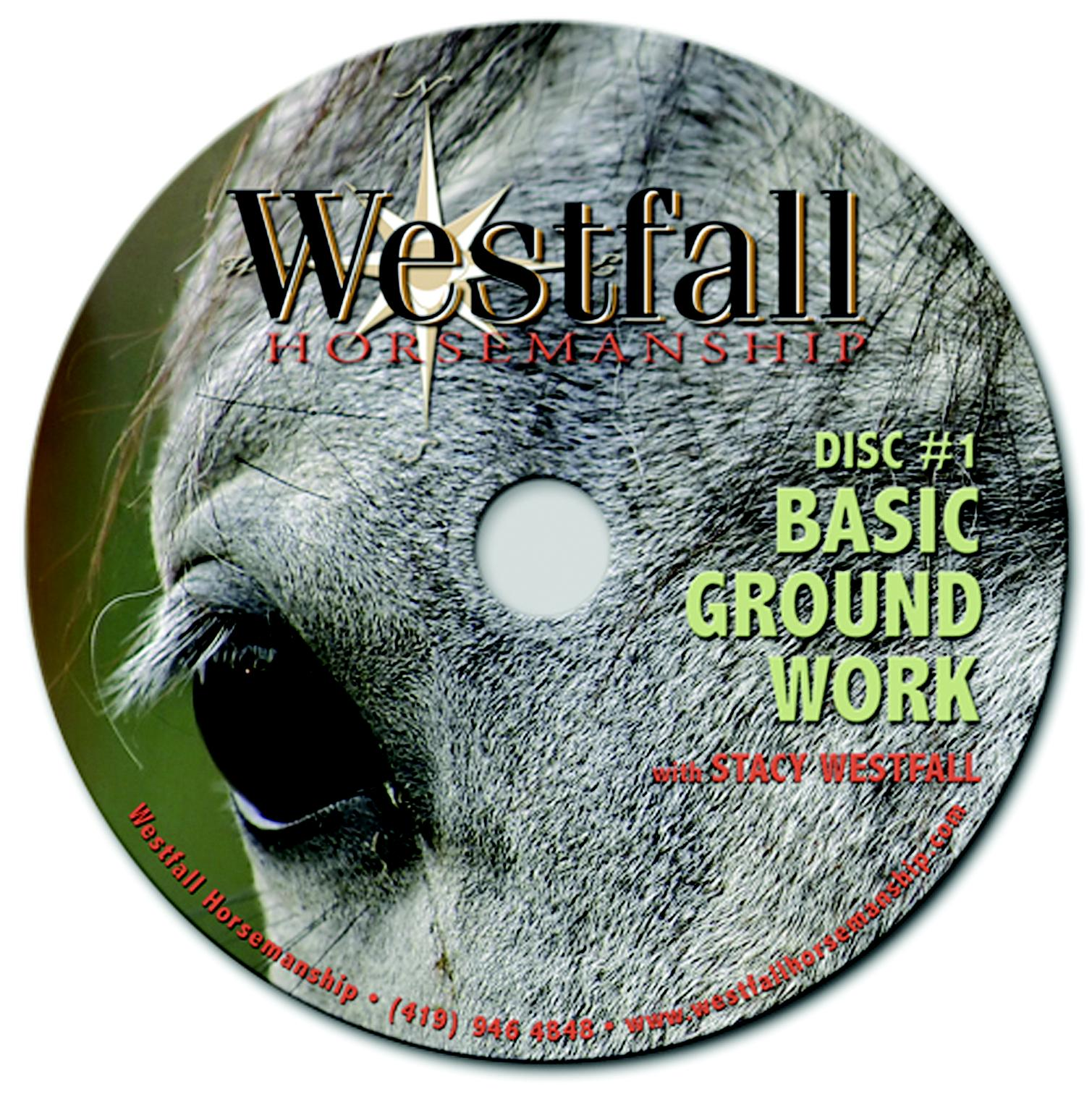Weaver Leather Basic Ground Work Dvd