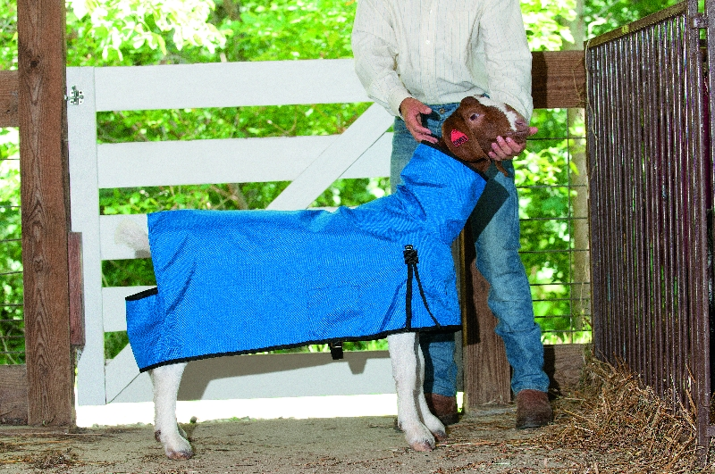 Weaver Leather's Cordura Goat Blanket