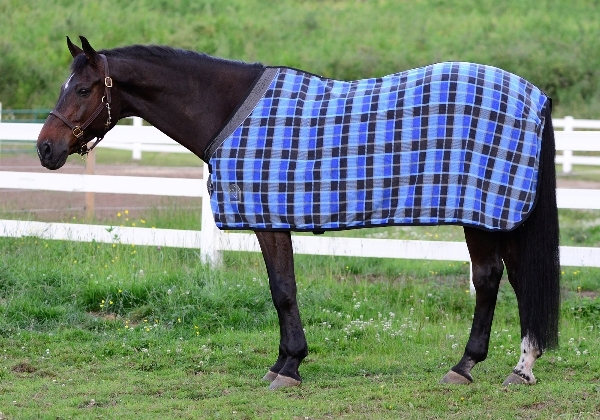 EOUS Plaid Fleece Rug