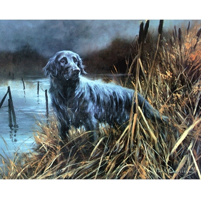 Flat Coat at Work By: Mick Cawston