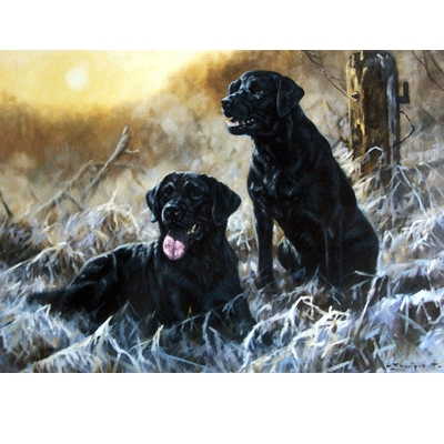 Winter Sun (Labrador Retriever) Blank Greeting Cards - 6 Pack