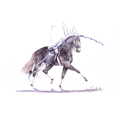 Diadem (Dressage) By: Jan Kunster, Matted