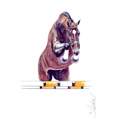 Amaretto (Show Jumper)