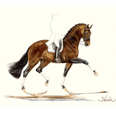 Primavera (Dressage) By: Jan Kunster