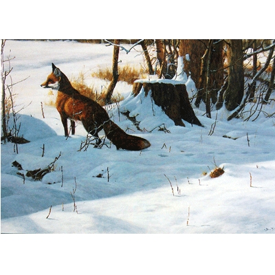 Christmas Morning (Fox) Blank Greeting Cards - 6 Pack