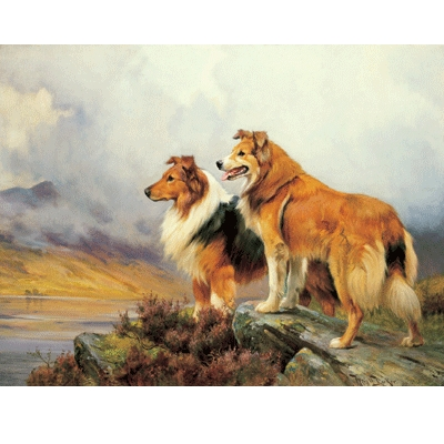 Collies in a Highland Landscape By: Barker Wright