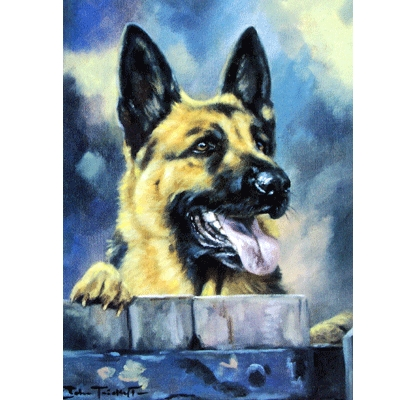 Over the Garden Wall (German Shepherd) Blank Greeting Cards - 6 Pack