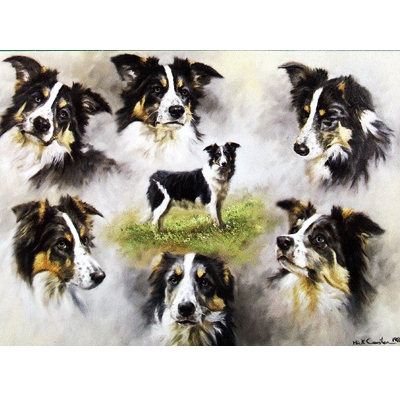The Border Collie Blank Greeting Cards - 6 Pack