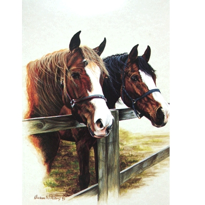 Waiting at the Fence Blank Greeting Cards - 6 Pack