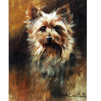 The Yorkie By: Mick Cawston