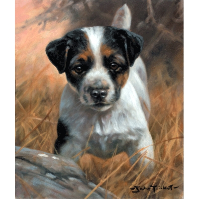 Jack Russell Pup By: John Trickett