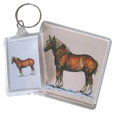 Acrylic Magnet - Belgian