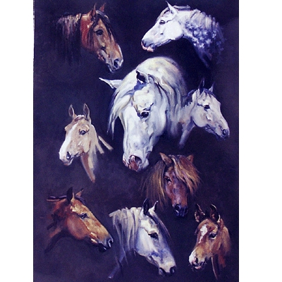 Horses Blank Greeting Cards - 6 Pack