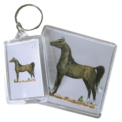 Acrylic Magnet - Arabian