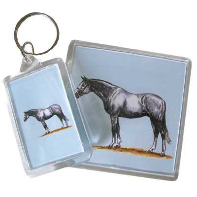 Acrylic Magnet - Warmblood