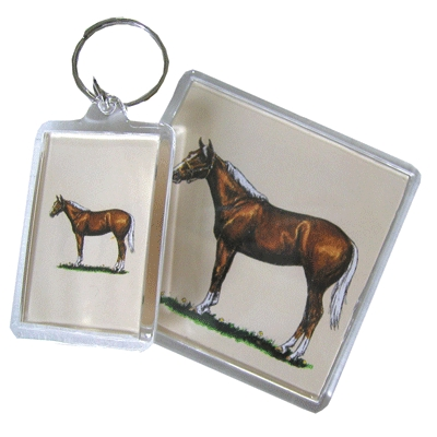 Acrylic Magnet - Quarter Horse