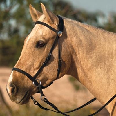 Nurtural Horse Nylon Bitless Bridle