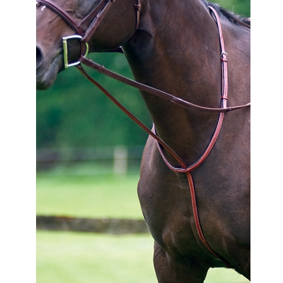 Exselle Elite Fancy Square Raised Standing Martingale