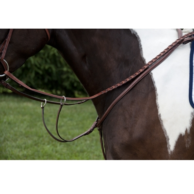 Exselle Elite Fancy Square Raised Standing Breastplate