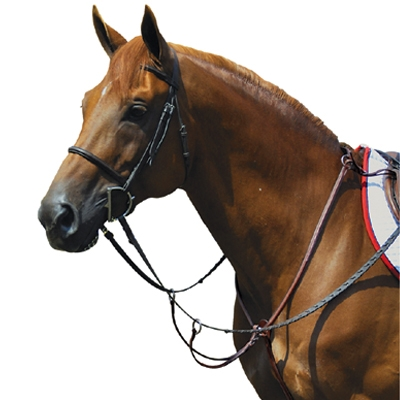 Exselle Elite Fancy High Raised Running Breastplate