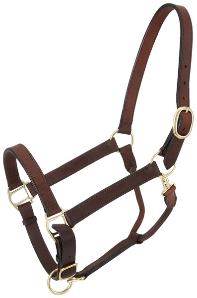 Tough-1 Churchill Stable Suckling Halter with Snap
