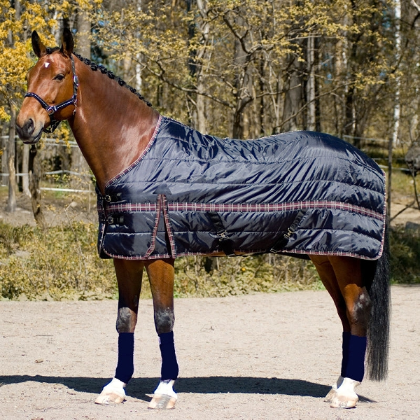 HorZe New Thermo Rug