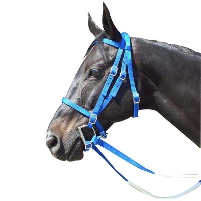 Racing Bridle - Nylon