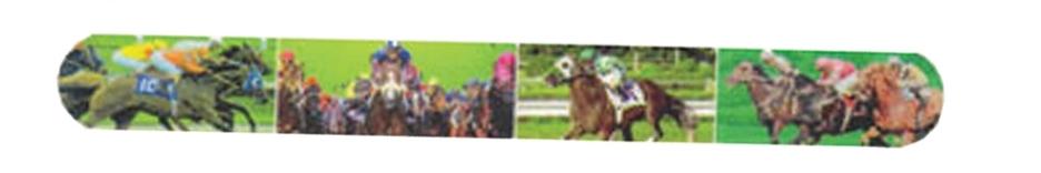 Race Horses Nail File