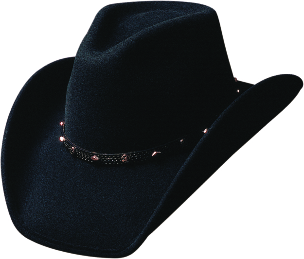Bullhide Thunderbird Classic Felt Hat