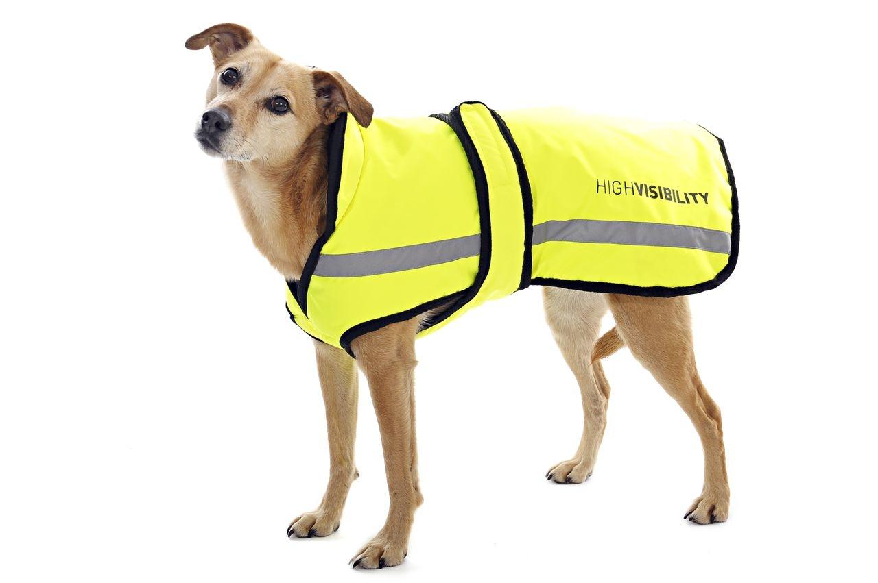 Equisafety Reflective Dog Blanket