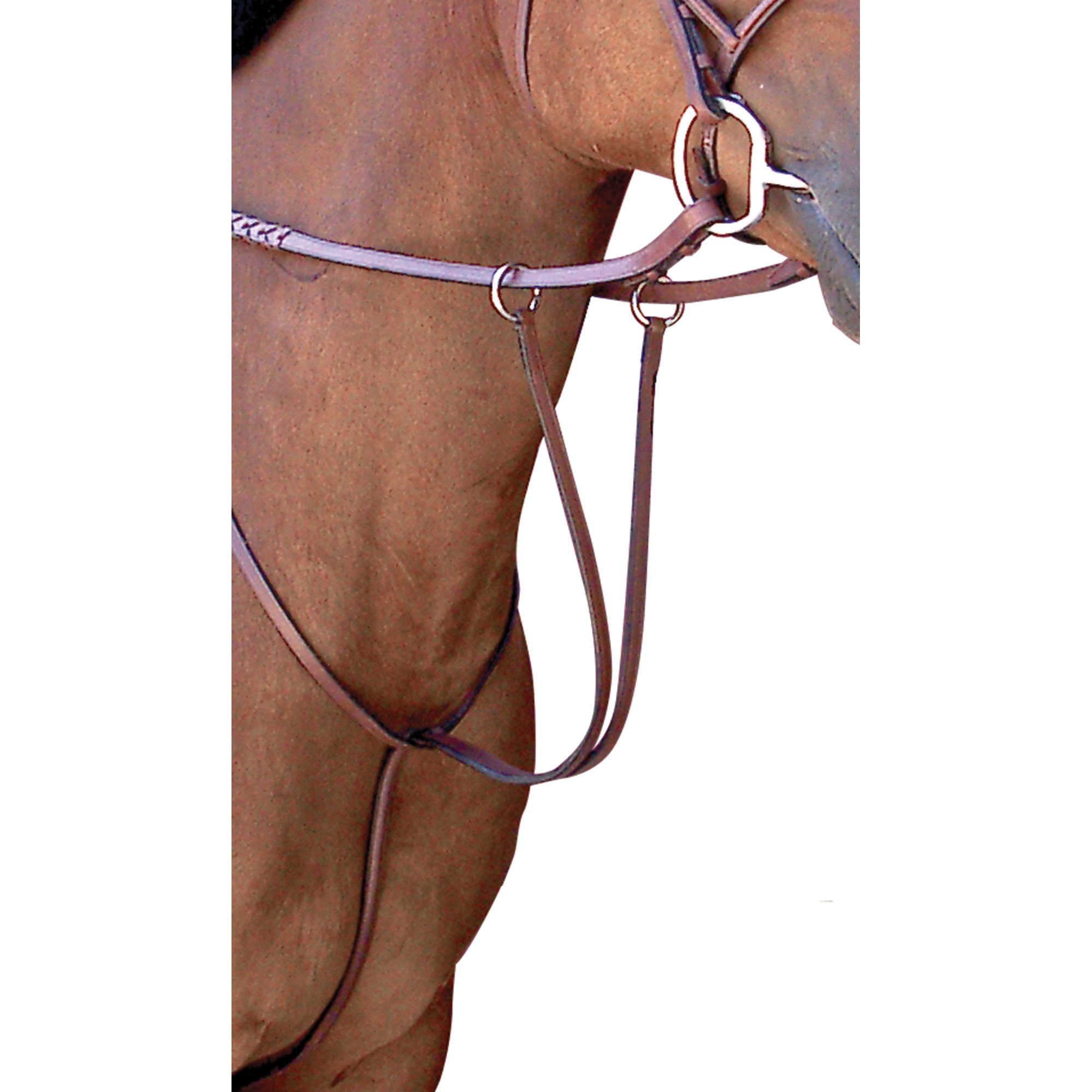 Toklat Passport Plain Raised Running Martingale