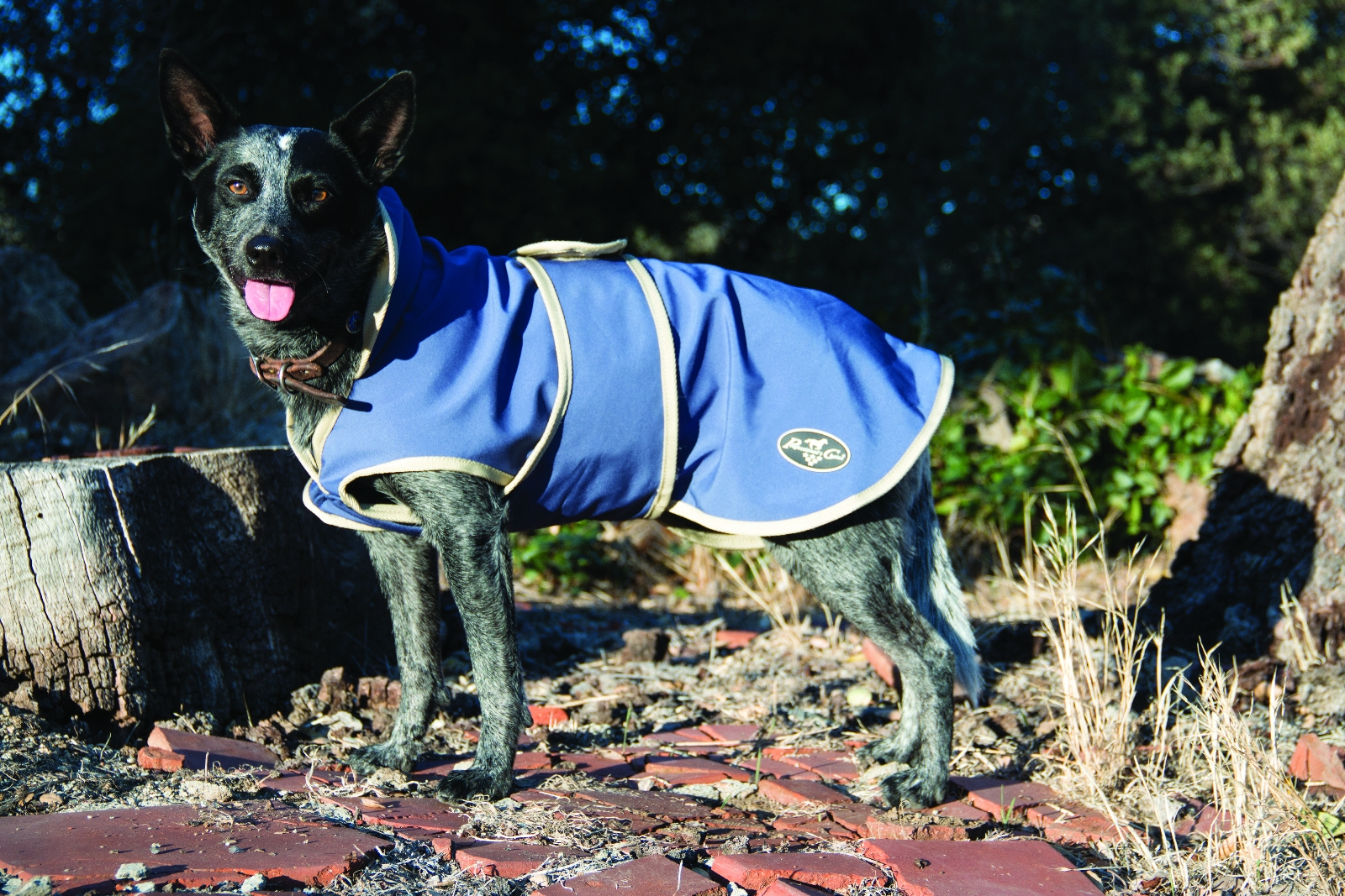Professionals Choice Dog Jacket