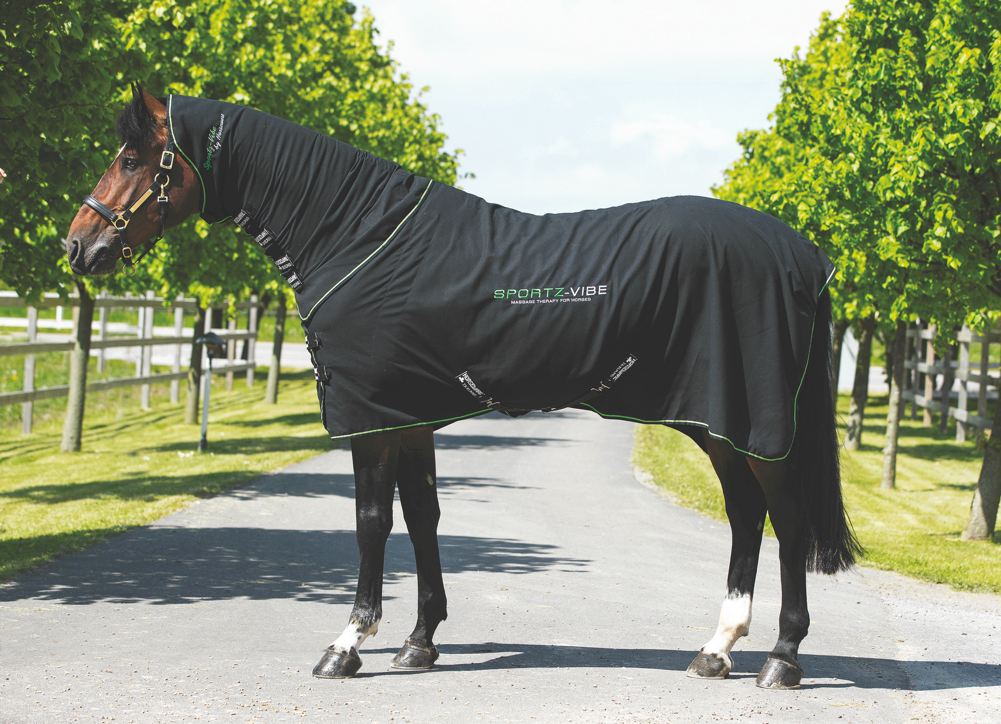 Sportzvibe Horse Rug