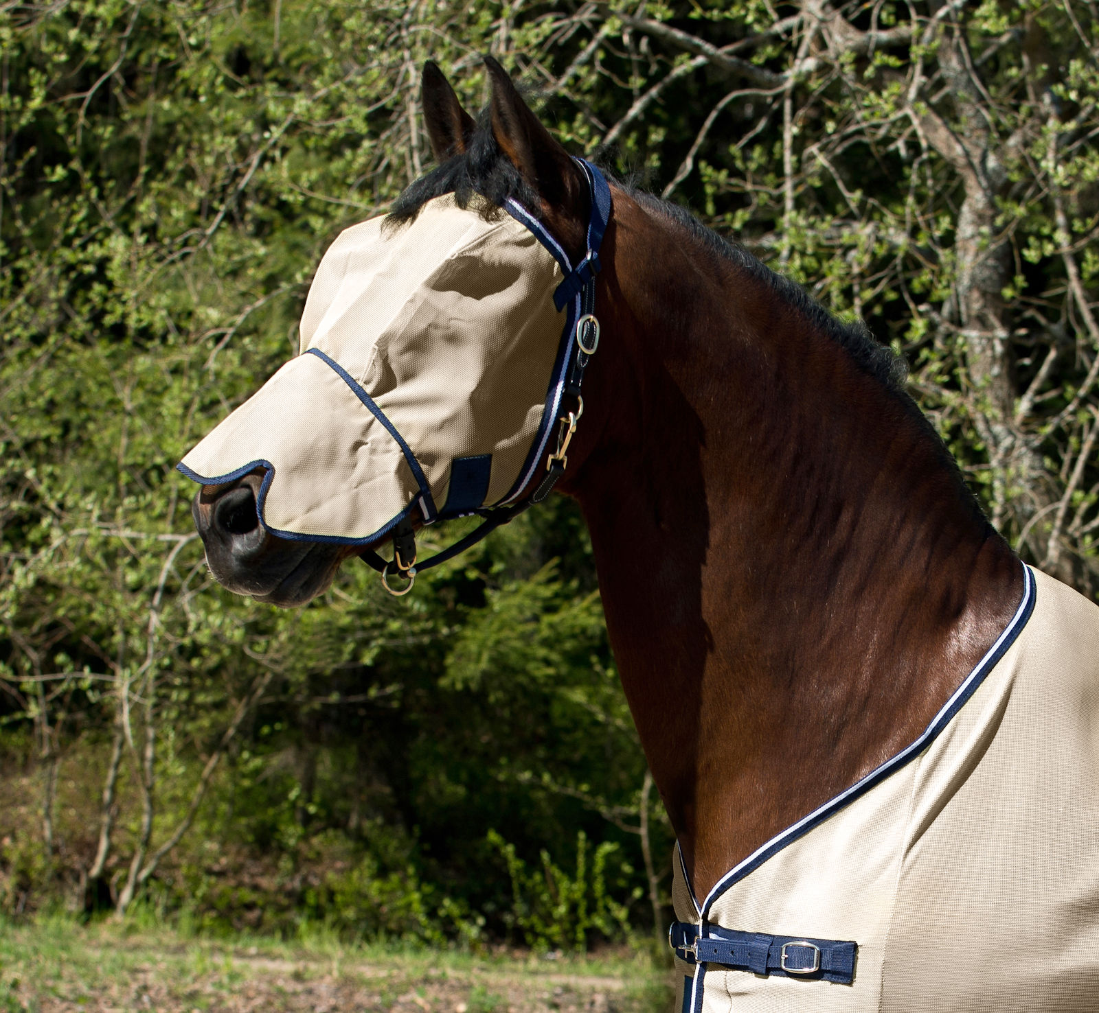 HorZe Seville Flyhood with Nose Protection