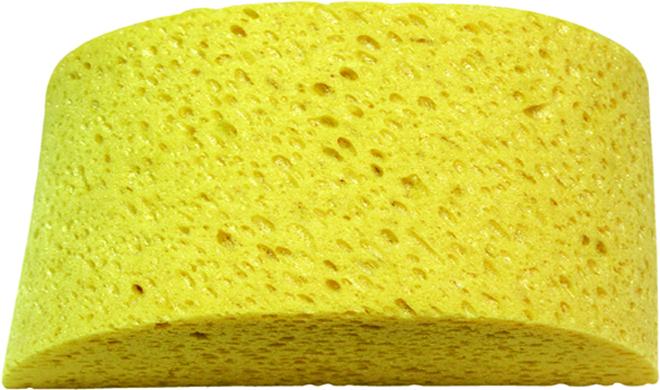 ABETTA Sponge Humpback