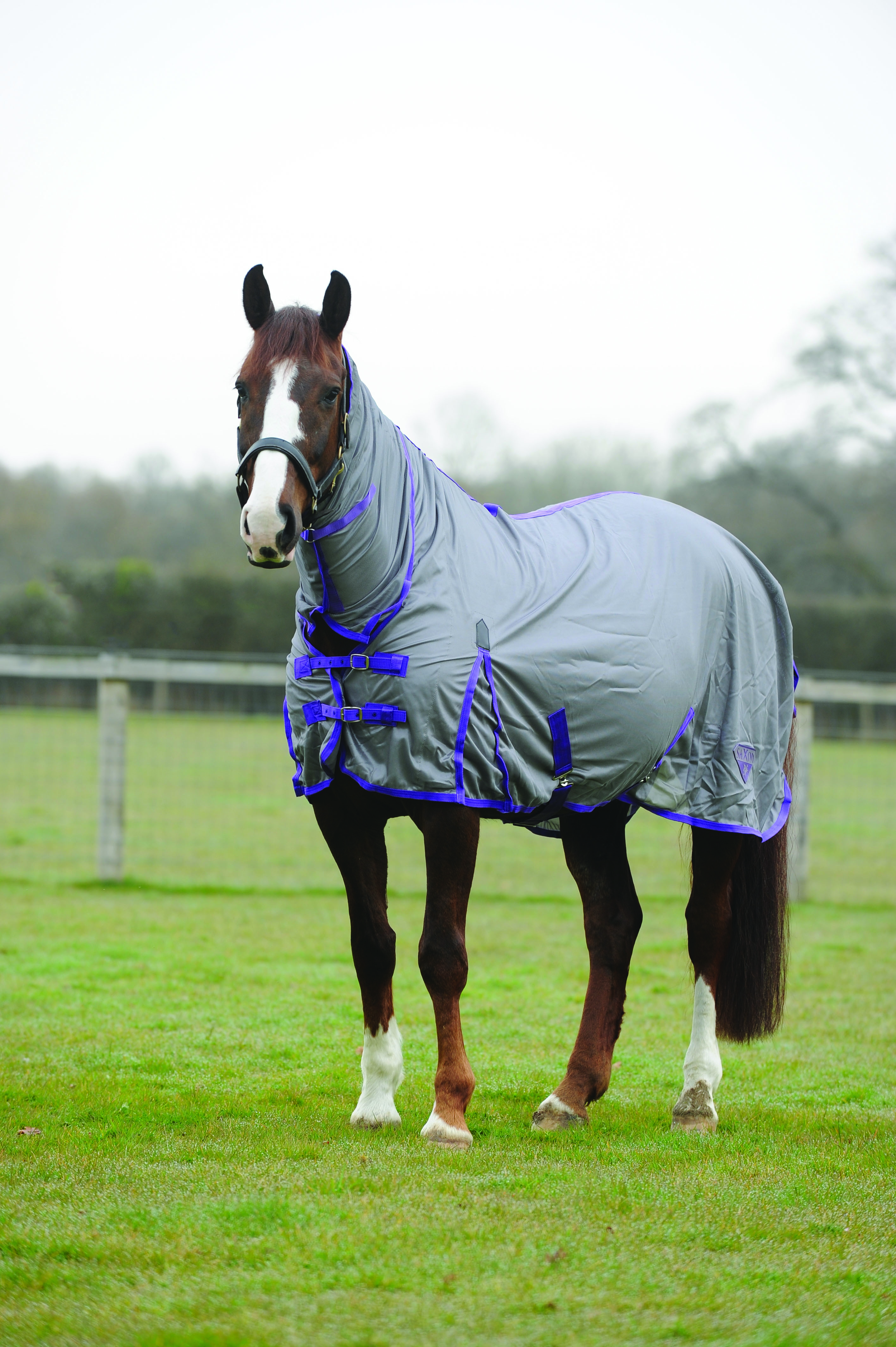 Saxon Softmesh Combo Neck Fly Sheet