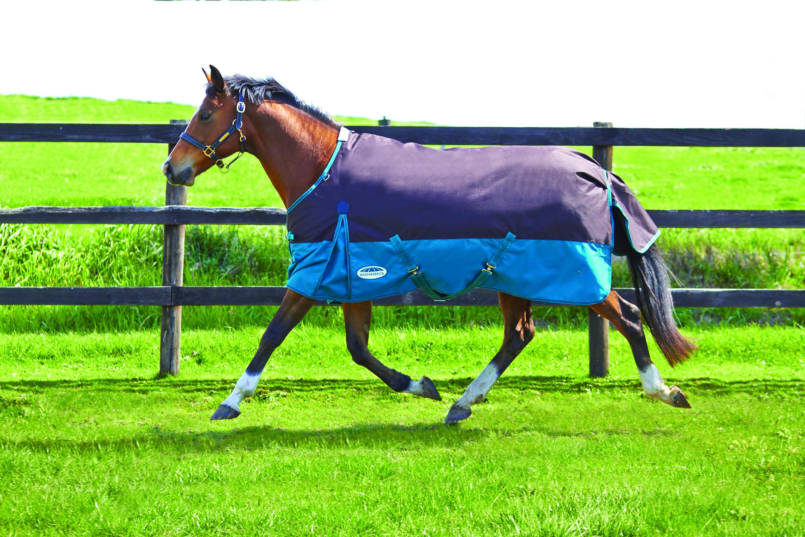 Weatherbeeta Original 1200D Standard Neck Lite Blanket